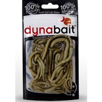 DynaBait Freeze Dried EarthWorms Dyna Bait Fishing Lure Bass Trout Cod