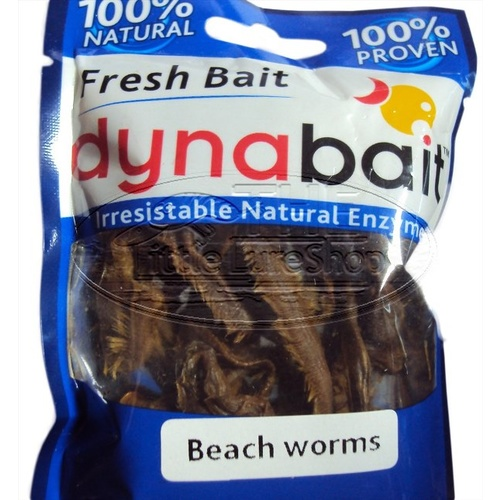 Dynabait Soft Beach Worms Hydrated Fishing Lure Worm Bait Whiting Bream Cod Dyna Bait